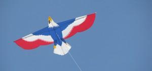 JS Eagle